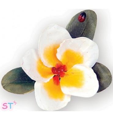 Troquel Flower Plumeria