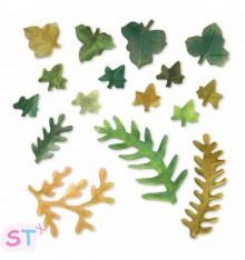 Troquel Thinlits Leaves, Fern & Ivy