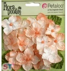 Velvet Hydrangeas Apricot