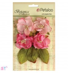 Botanica Blooms Pink x 4
