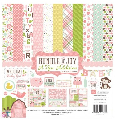 Paper pad Bundle Of Joy/A New Addition Baby Girl12x12