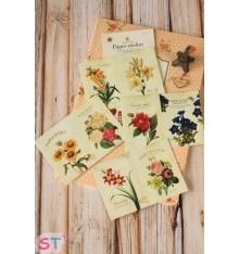 Set 8 pegatinas Flowers