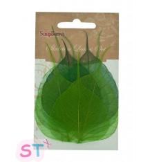 Hojas de papel verdes Scrapberrys