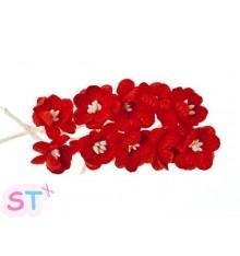 Cherry Blossom Rojas x 10 Scrapberrys