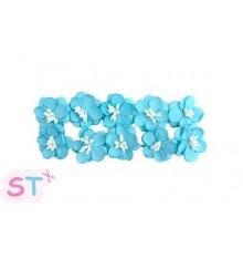 Cherry Blossom Azul cielo x 10 Scrapberrys