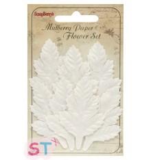 Hojas de Cedro blancas de papel mezcladas Scrapberrys