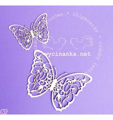 Dos Mariposas Bosque Tropical