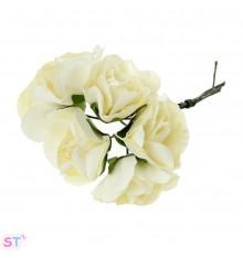 Rosas Blancas x 6