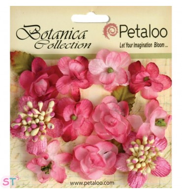 Botanica Mini Blooms Fucsia x 11