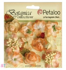 Botanica Mini Blooms Peach x 11