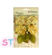 Botanica Blooms Yellow x 4