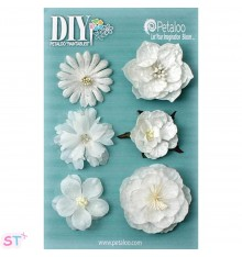 DIY Blooms pintables x 6
