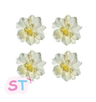 Gardenia Blanca x 4 Scrapberrys