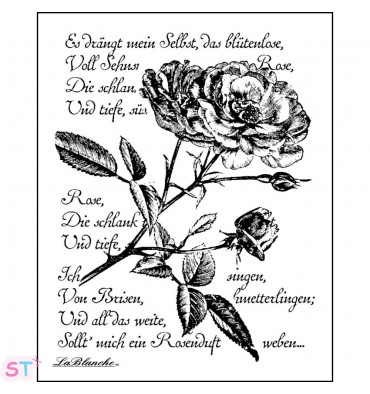 Sello Written Rose