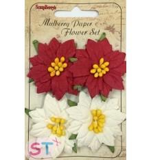 Poinsettias 4x5 cm x 4
