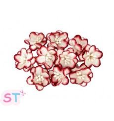 Cherry Blossom Blancas y Rojas x 10 Scrapberrys